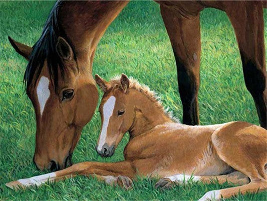 Horses Running With Dog - 5d Diamond Painting Kit