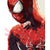 Frameless Spiderman - Paint By Numbers Kit