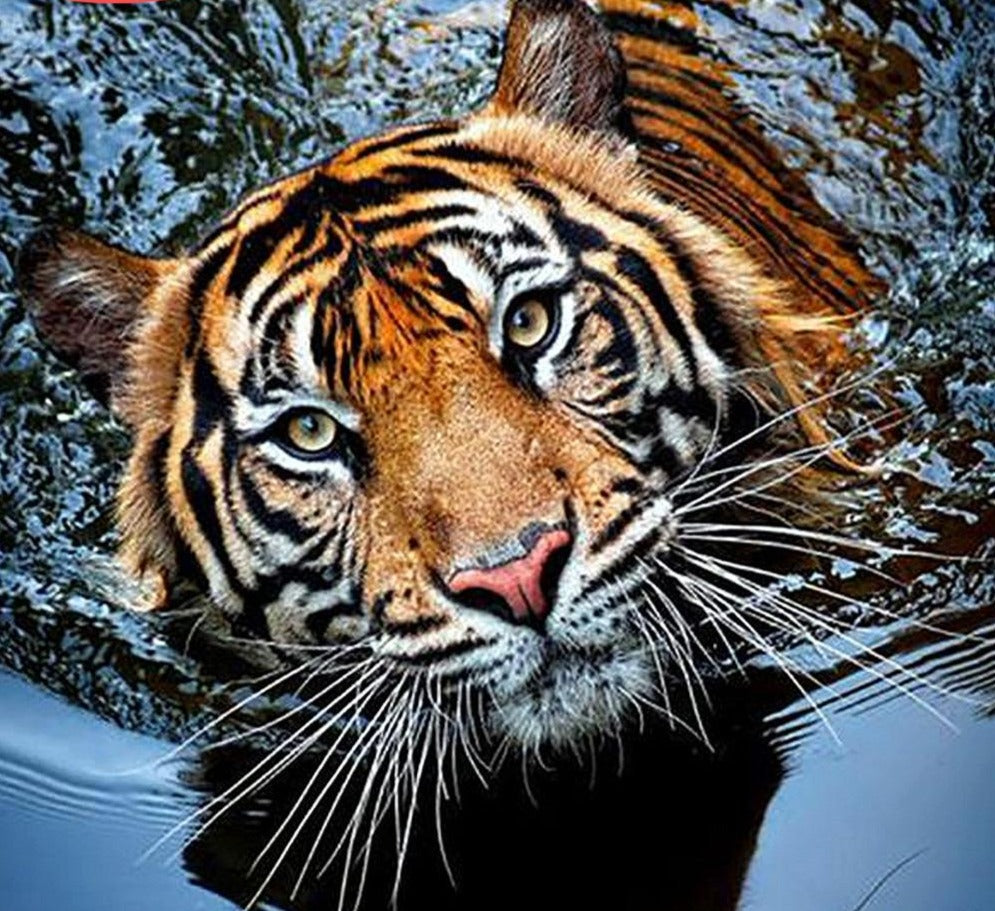 Bengali Tiger Swimming - 5d Diamond Painting Kit