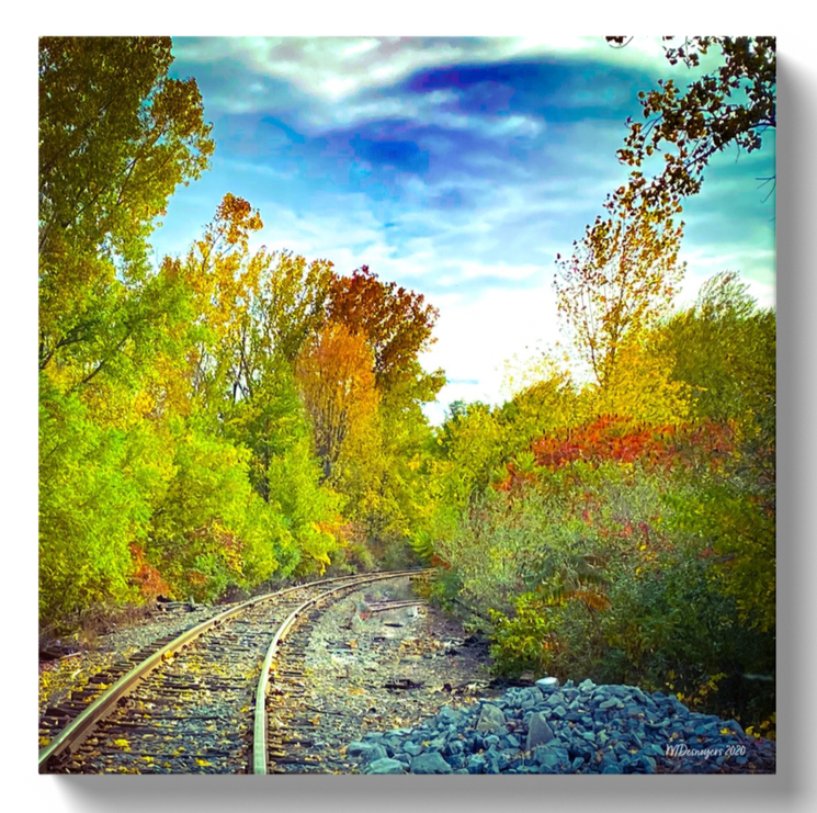 Canvas Art Print in Black or White Wraps New York Landscape Autumn Railway Beautiful Skies