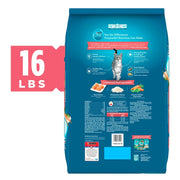 Purina ONE Tender Selects Blend Real Salmon Dry Cat Food