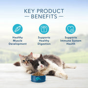 Blue Buffalo Multi-Cat Natural Chicken & Turkey Adult Dry Cat Food