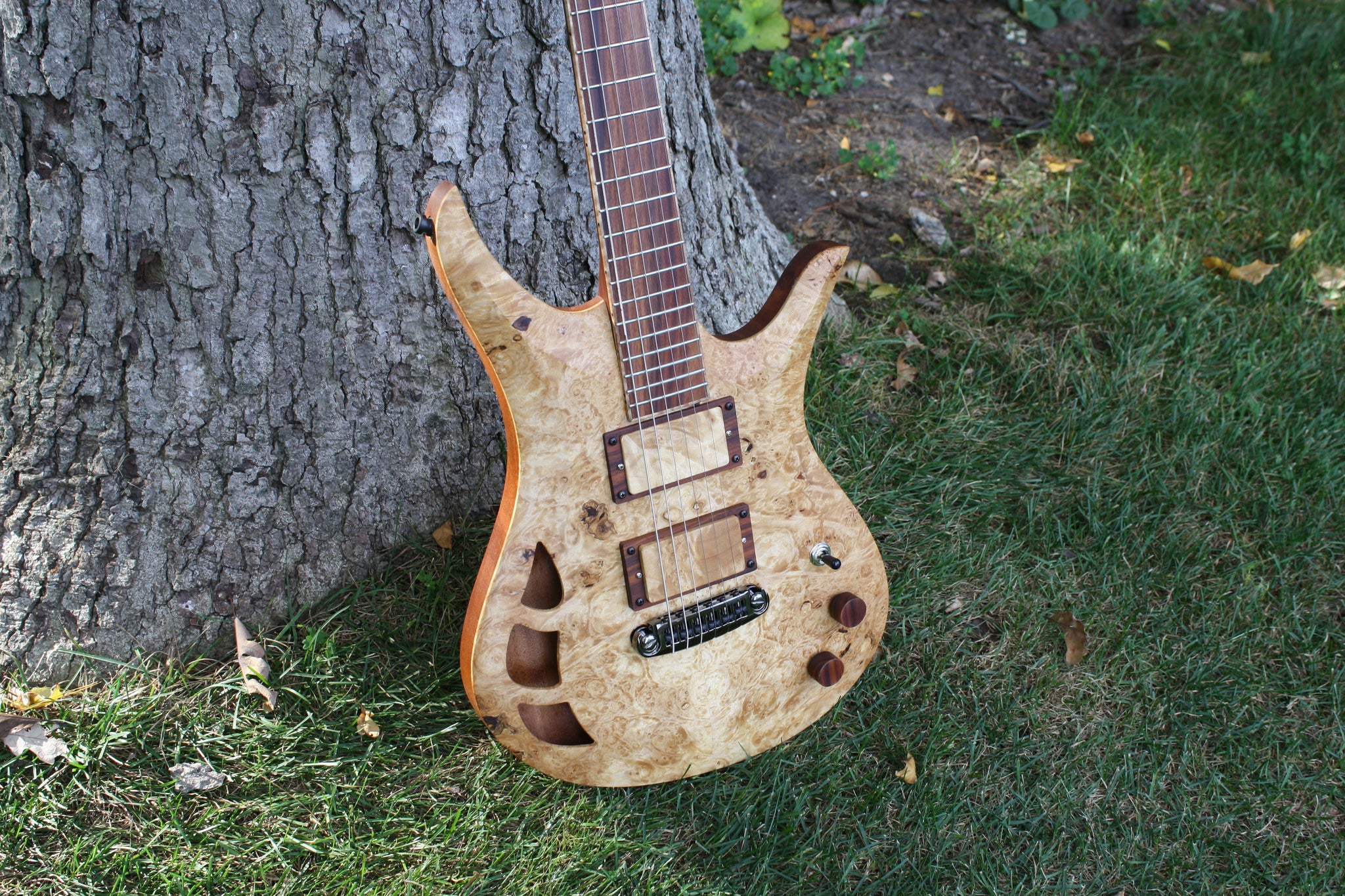 Acer Guitars Burl Maple Omni electric guitar