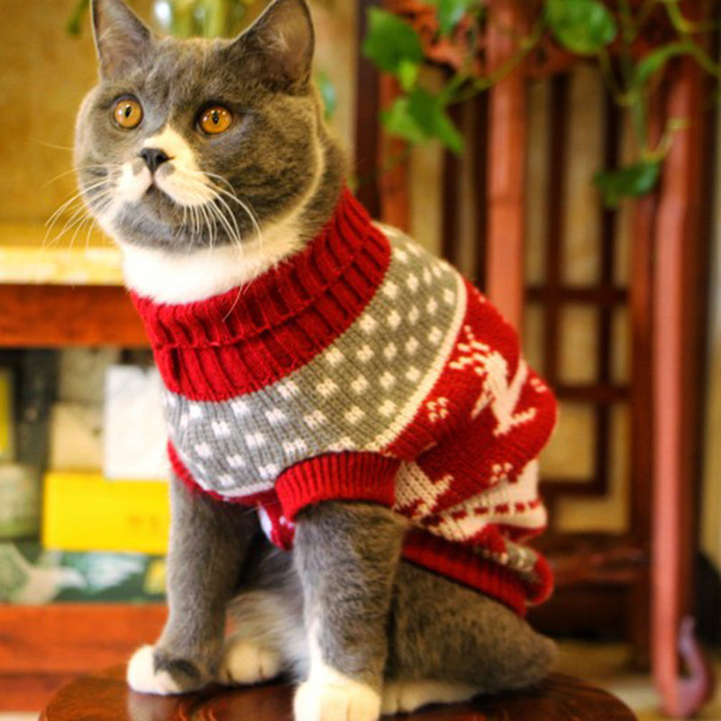 Cute Cat Sweater Costume Winter Warm - catixy