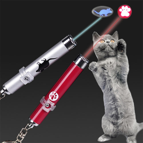 Funny Pet LED Laser Toy Cat Laser - catixy