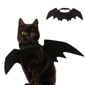 Halloween Costume For Dog Bat Wings Cat - catixy