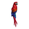Macaw Wall Art