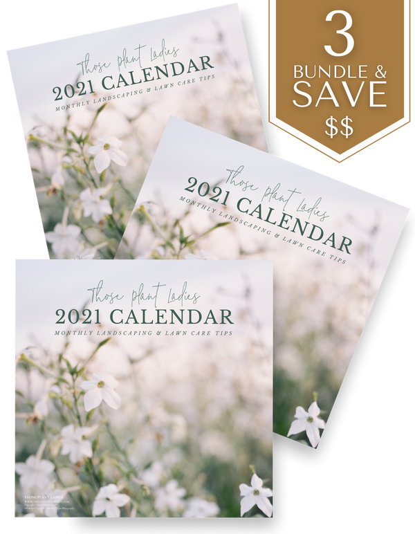 BUNDLE (3) 2021 Wall Calendar