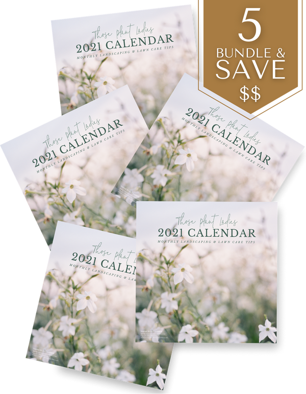 BUNDLE (5) 2021 Wall Calendar