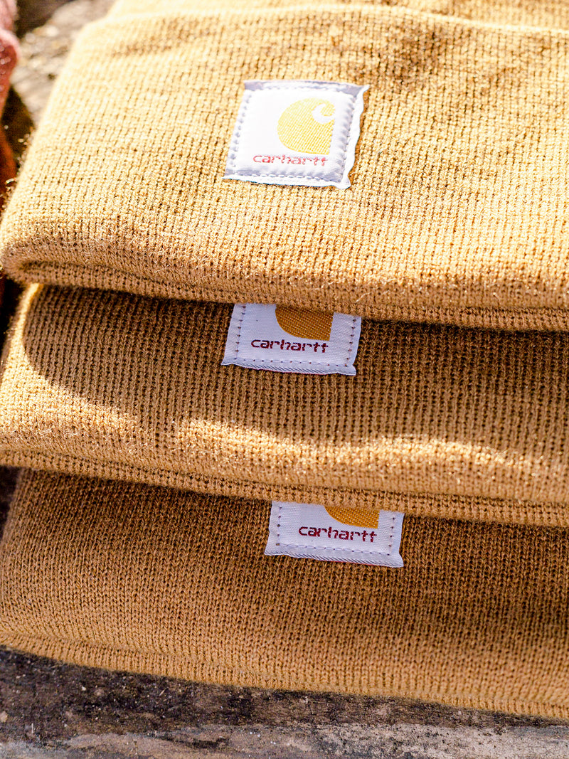 Carhartt Beanie in Carhartt Brown