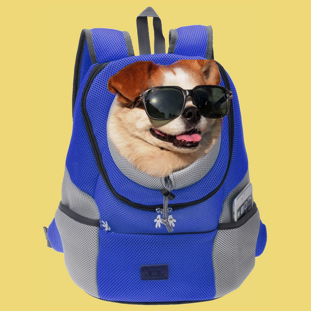 1x Pet Backpack