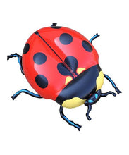 Load image into Gallery viewer, Ladybird
