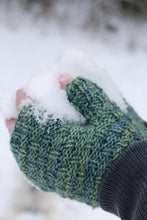Load image into Gallery viewer, Carpea Fingerless Mitts by Kim McBrien Evans-Digital PDF Pattern