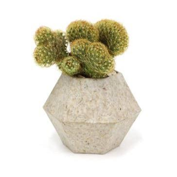 Recycled Husks Planter - May Wynn
