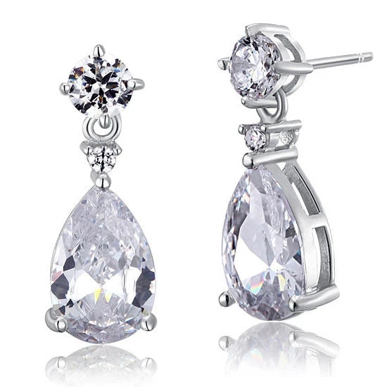 Sterling Silver Earrings - PFE8031