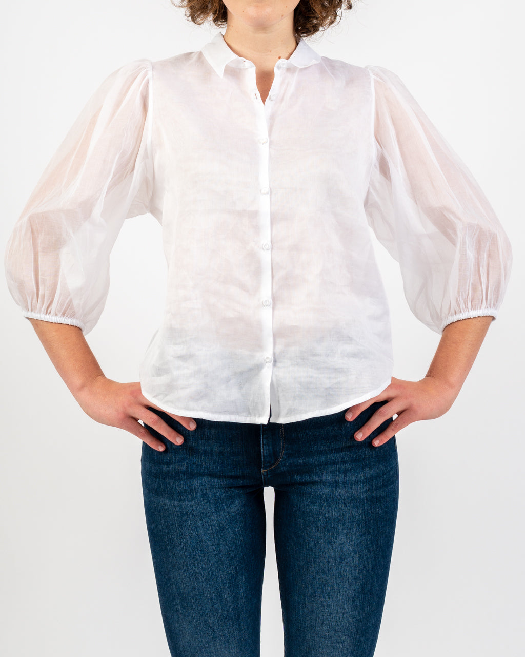 Organza Sheer Balloon Blouse
