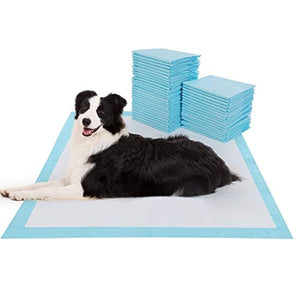 Pet Training and Puppy Pee Pads 40ct - ProsperDog