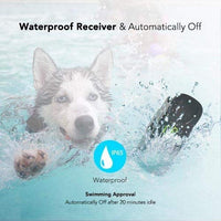 Waterproof Dog Shock Collar - ProsperDog