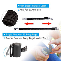 4 in 1 Retractable Dog Leash - ProsperDog