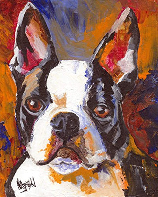 Boston Terrier Dog Fine Art Print - ProsperDog
