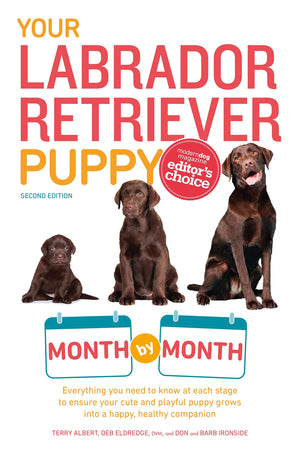 Your Labrador Retriever Puppy by Month - ProsperDog