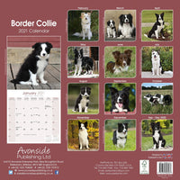 Border Collie Wall Calendar 2021 - ProsperDog