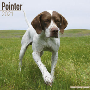 Pointer Wall Calendar 2021 - ProsperDog