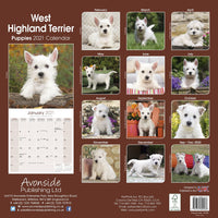 West Highland Terrier Puppies Wall Calendar 2021 - ProsperDog