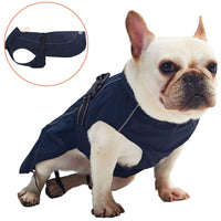 Dog Raincoat with Reflective Straps - ProsperDog