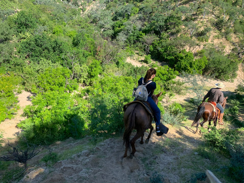The backpack is taken on a wonderful horse ride in Baja. We are on a steep downhill with green scenery.