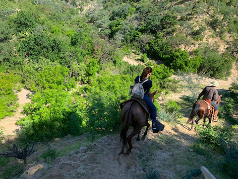 A young woman is riding a horse on a steep downhill in a desert landscape of Baja, wearing the backpack.