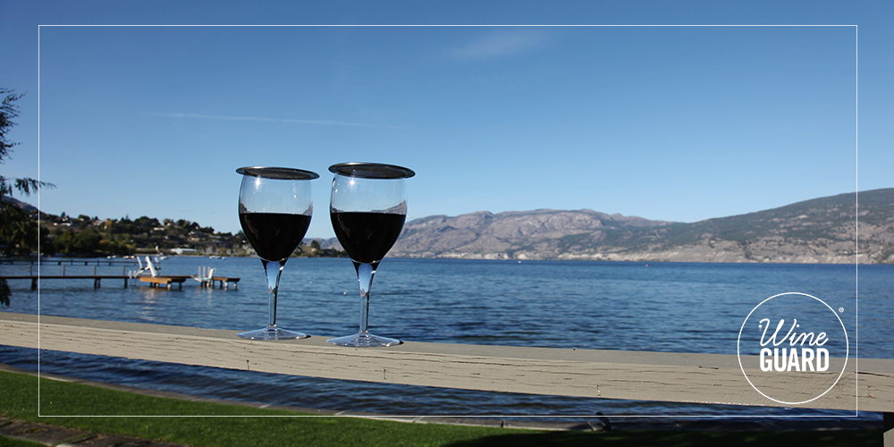 Wine glasses with lids by a lake