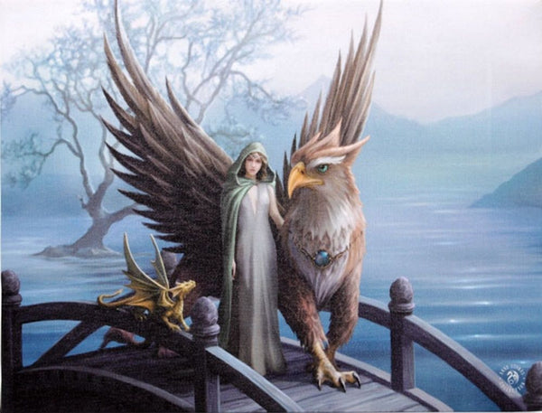 Griffin and Dragon Wall Plaque Art Print - Anne Stokes Maiden Gryphon Fantasy