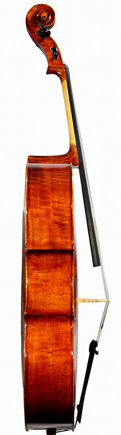 Violin Pros - Krutz 200 Cello Outfit