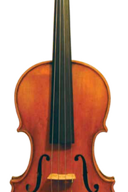 Maple Leaf Strings Burled Violin
