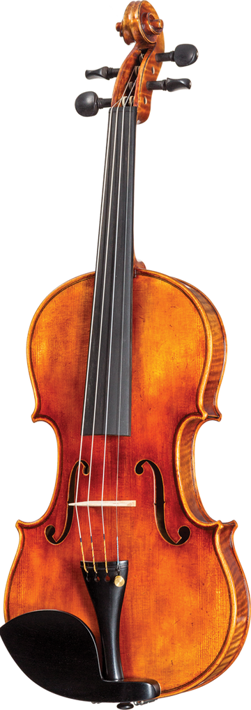 Violin Pros Core Select CS2000 La Cathedrale Violin
