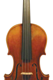 "Maple Leaf Strings ""Chaconne"" Violin"