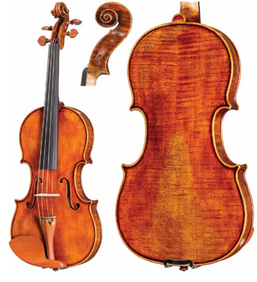 Howard Core Dragon DR10 Viola