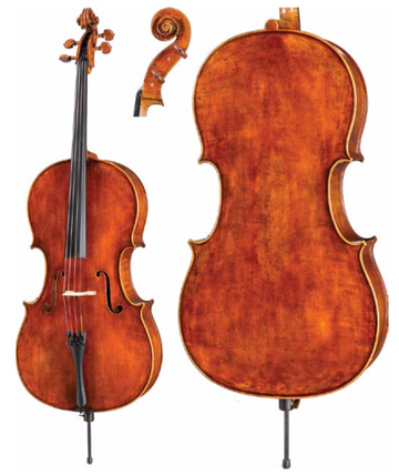 Core Dragon Series DR10 Cello