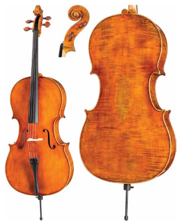 Core Dragon Series DR20 Cello