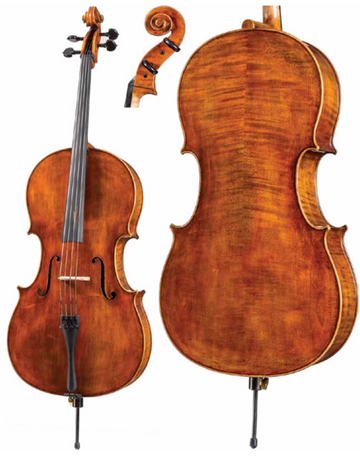 Core Dragon Series DR30 Cello