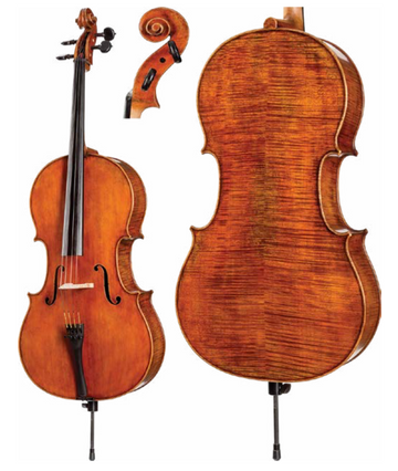 Core Dragon Series DR50 Cello