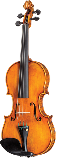 Violin Pros Howard Core Dragon DR50 Violin