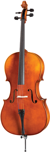Violin Pros Höfner Model 8 Cello