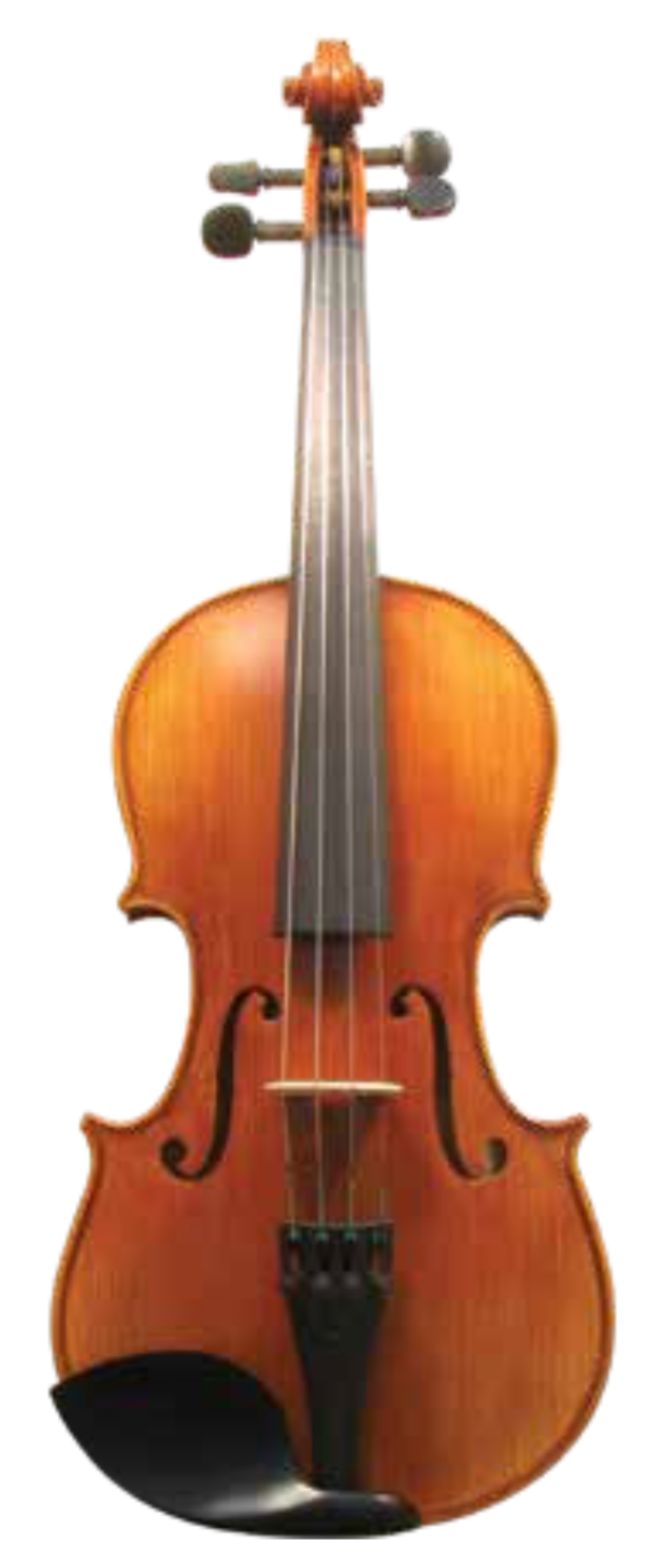 Maple Leaf Strings MLS130 Violin Outfit