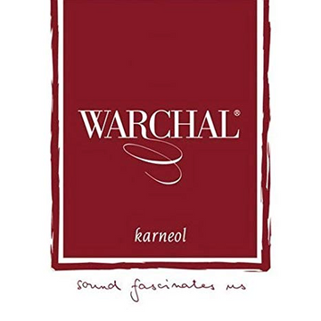 Warchal Karneol violin string set with ball end E