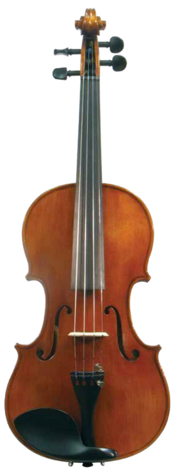 Maple Leaf Strings