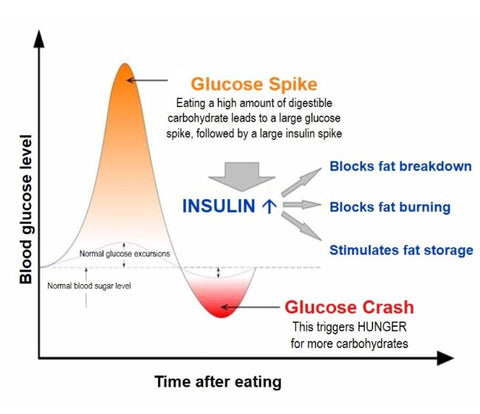 insulin-spikes-insulin-response-from-carb-heavy-diet