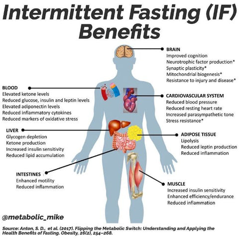 carnivore-dieting-intermittent-fasting-weight-loss-16:8-FASTING