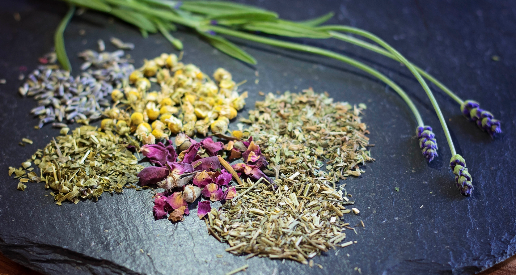 Various herbs used in herbal medicine pictured, including lavender and chamomile.